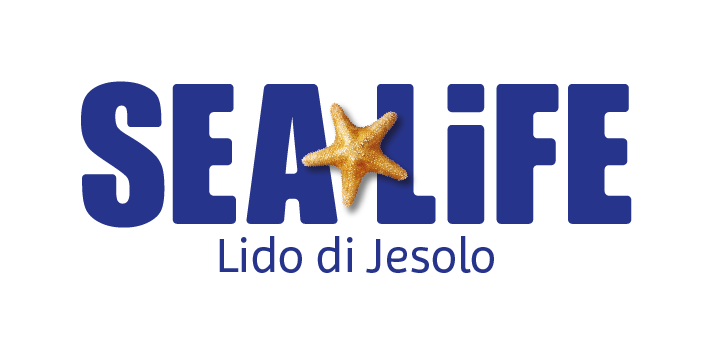 Lido di Jesolo SEA LIFE Aquarium
